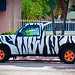 Zebra Striped Pickup Truck - South Beach, FL