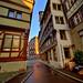 Vert_42554_49_ETM1 / Tübingen - Germany