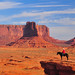 Monument Valley Cowboy