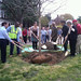 The University of Maryland Celebrates Arbor Day