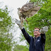 Red-tailed Hawk Release-7589.jpg