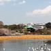 Ueno Park nature reserve