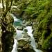 Tolminska  gorges