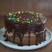 birthday cake, rescued