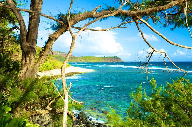 Photo for Kauai life real estate