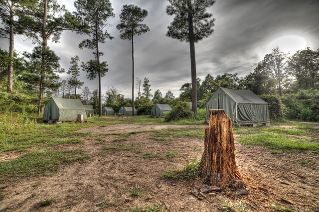 Lost Pines Scout Reserve Bastrop Tx Captured With A