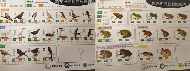 農田常見動物紀錄表。攝影:陳家銘。