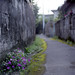 Alley of Okinawa