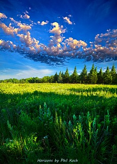 Fields and Dreams | by Phil~Koch