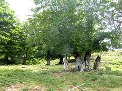 Traversée Croce-Frauletu : le hors-piste peu après la bergerie de Croce