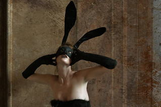 Naughty Bunny III | by Romany WG