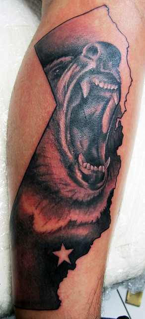 california bear tattoo flickr photo sharing