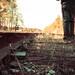 Making Tracks - Explored April 7th, 2012