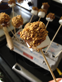 S'mores! On a Stick! Best. Thing. Ever. | by fishbowl_fish