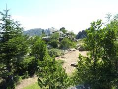Les environs de la source d'Ochju Grisgiu