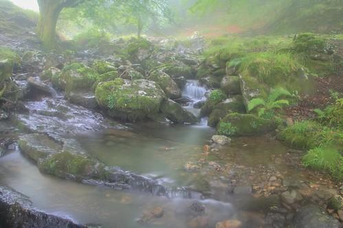 Parque Natural de #Gorbeia #Orozko #DePaseoConLarri #Flickr - -502