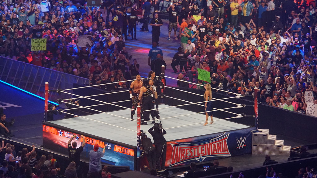 Image Result For Roman Reigns