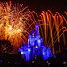 Wishes - Magic Kingdom