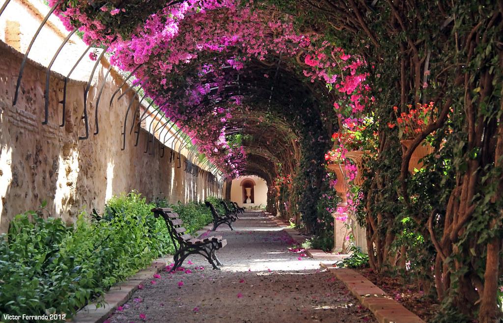 Jardines de Monforte - Valencia  Jardines de Monforte - Val…  Flickr