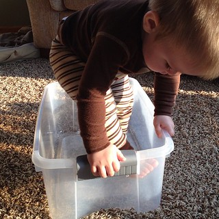 The best $5 I've ever spent. He plays with that box more than any other toy | by Stacey Heneveld