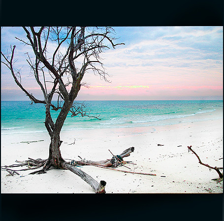Kalapathar beach at havelock island andaman nicobar is for Andaman and nicobar islands cuisine