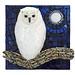 'Night Watchman'  Artist Susan Turlington