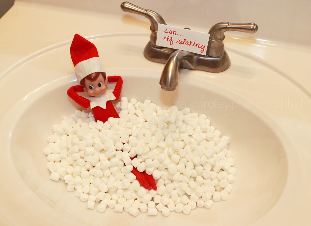 Elf on the shelf day 13 this morning we found lenny for Elf on the shelf pooping on cookies