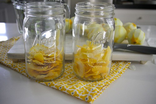 homemade limoncello | by shutterbean