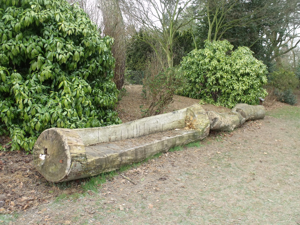 Kings Heath Park In Winter Tree Log Bench I Went To