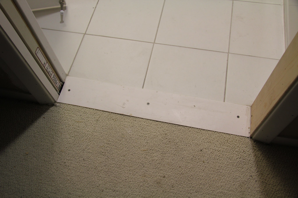 Bathroom Renovation - Carpet Transition Problem | This is ...