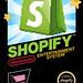NES-Shopify