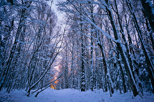 winter path at sunset | by michael spear hawkins
