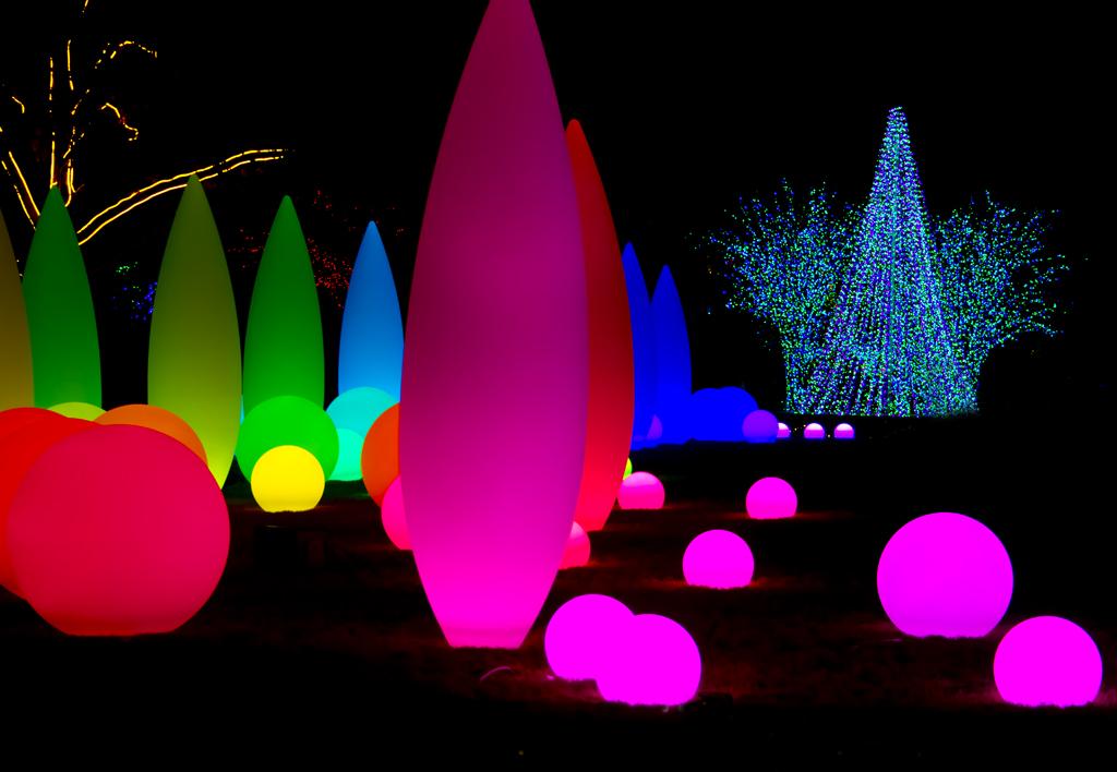 Atlanta Botanical Garden Christmas Light Display At The