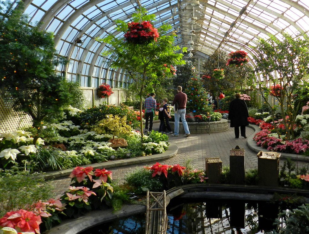 A Cold Day Becomes Warm Lincoln Park Conservatory