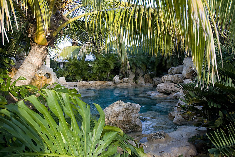 landscaping swimming pool tropical plants sarasota bradent