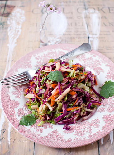 Red Cabbage Salad with Carrots and Apples | by Yelena Strokin