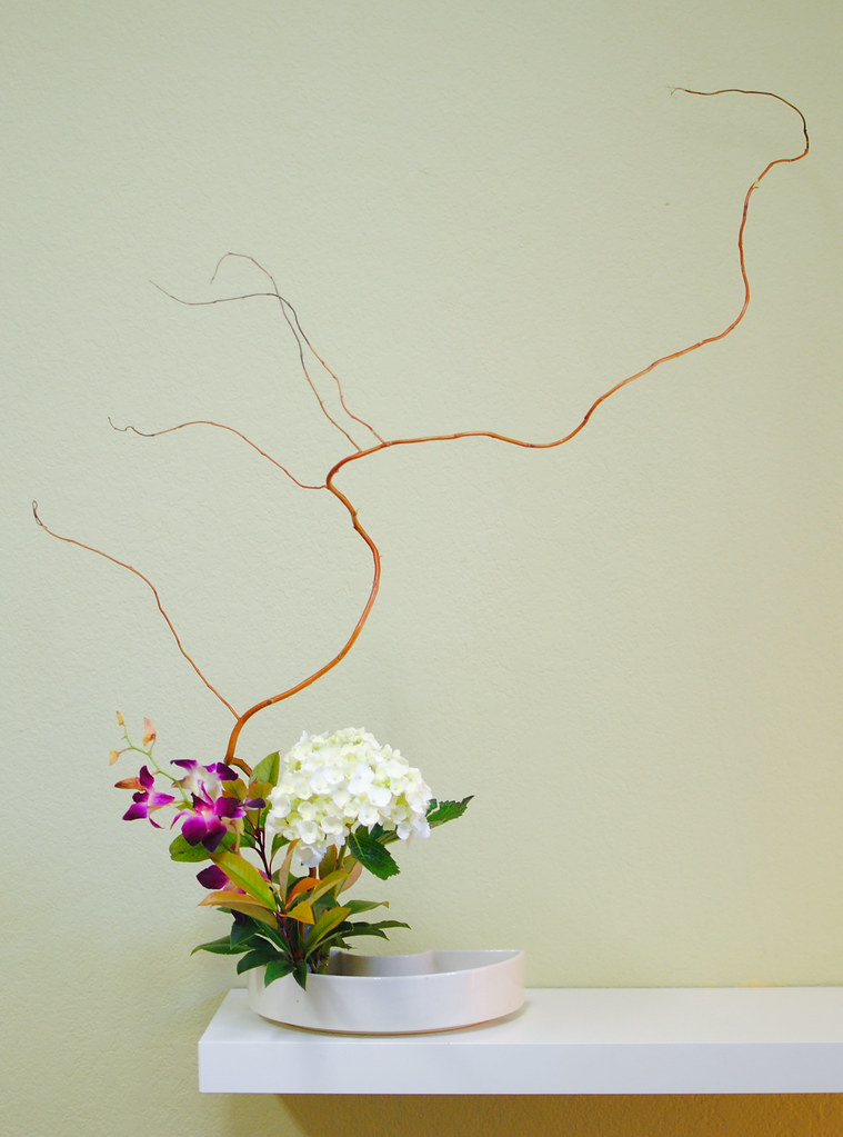 Curly Willow, Hydrangea, Orchid Ikebana | tokyofortwo | Flickr