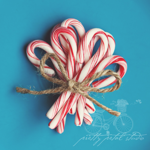 Candy Cane Rose Centerpiece : Candy cane bouquet susan lussier o connor flickr