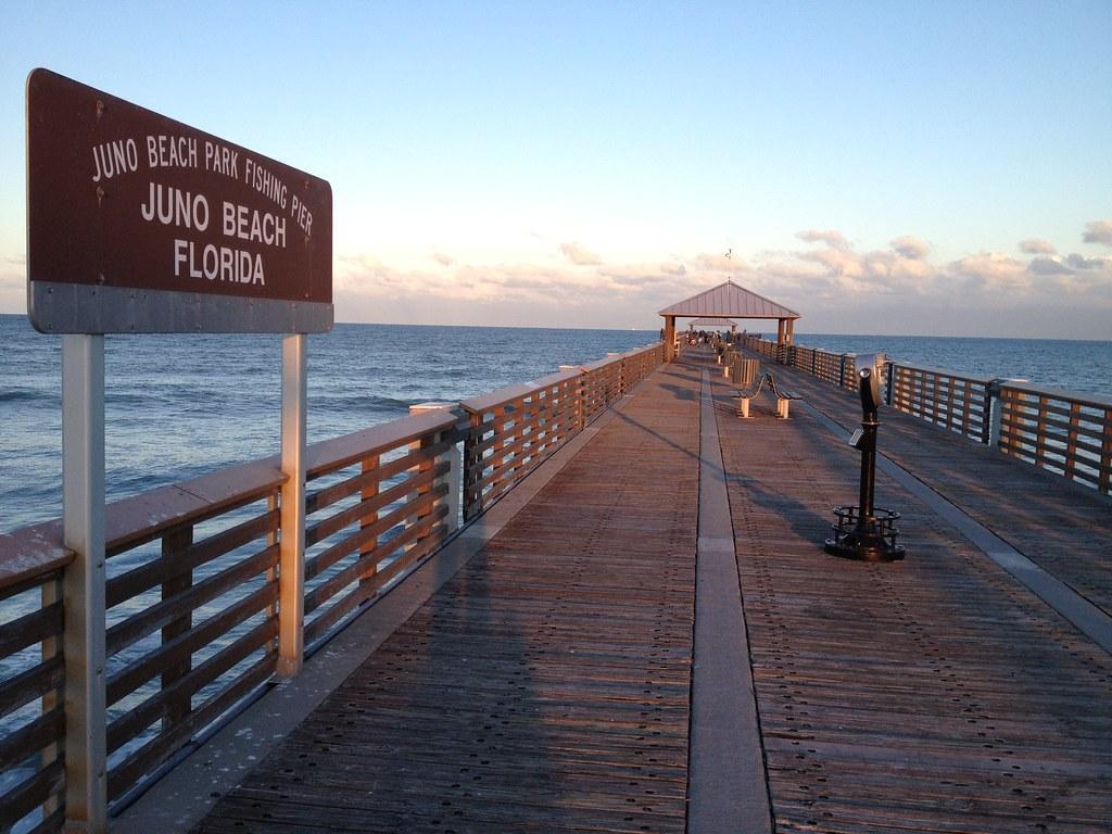 Img 2405 juno beach fishing pier albrey arrington flickr for Juno pier fishing report