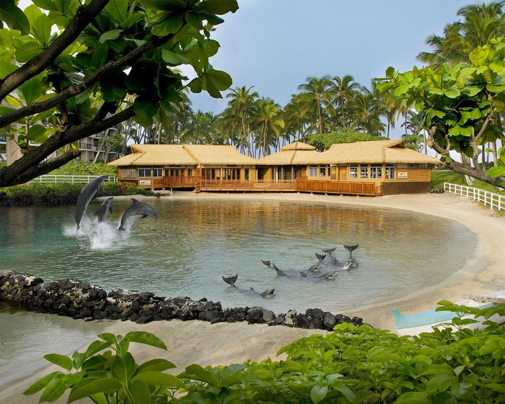 waikoloa, hawaiian islands, Hilton Waikoloa Village, hotels in hawaiian islands