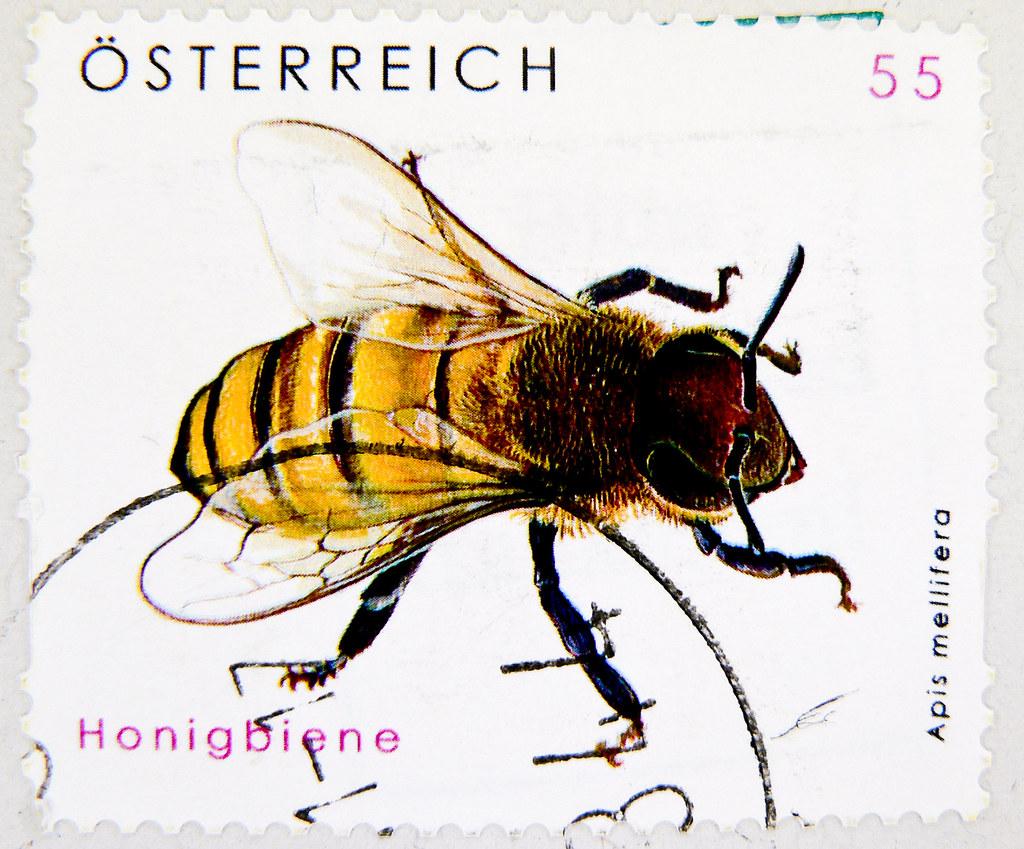 great stamp Austria 55c Honigbiene (apis mellifera, honeyb ... - photo#37