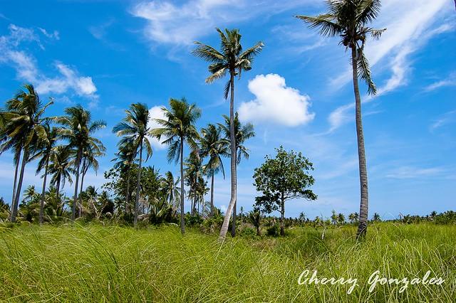 Mauban Philippines  city photo : Cagbalete Island Mauban Quezon, Philippines 4 | Flickr Photo Sharing ...