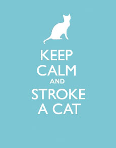Keep Calm and Stroke a Cat | by cox-on-the-box - we have rain!