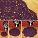 crocheted chunky elegance round rug trio