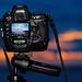 #850C8105- Sunset Shooter