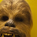 Chewbacca Unmasked