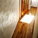 trapdoor / lightdoor