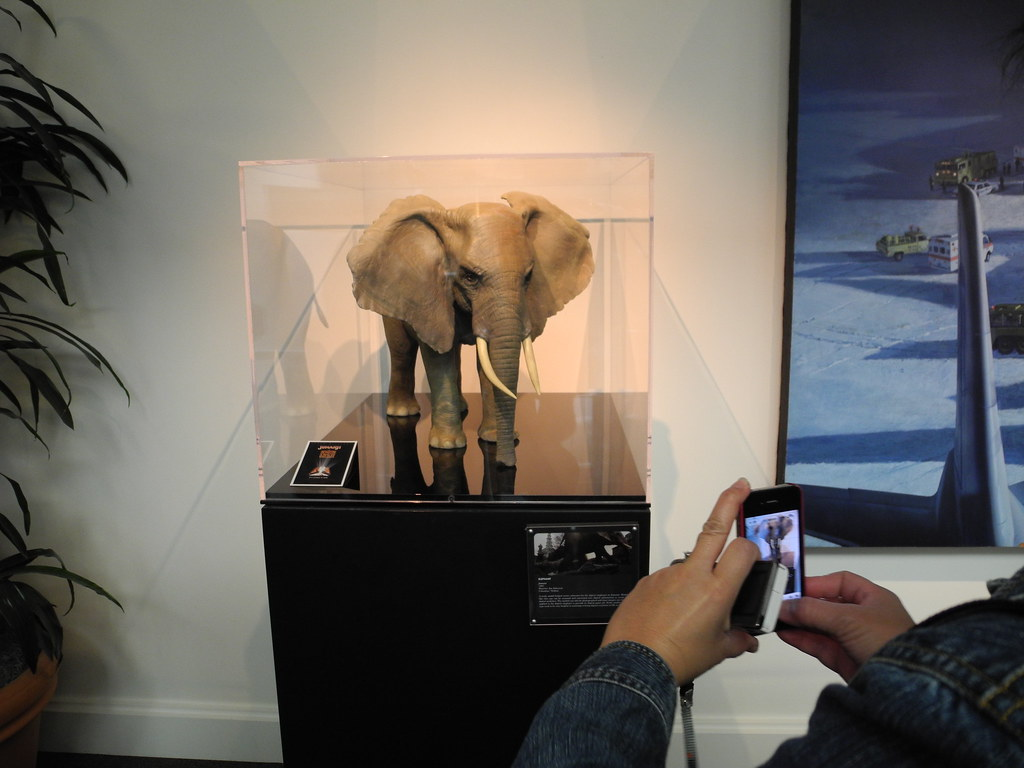 An Elephant Model From Quot Jumanji Quot Matt Blum Flickr