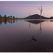Lake Moogerah Dressed in Pink