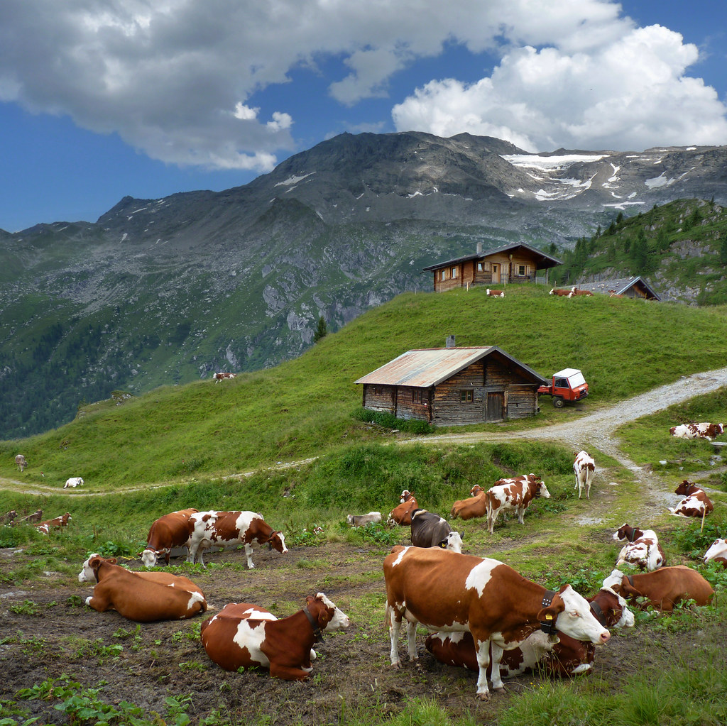 Austrian Mountain Farm At The Foot Of The Hintertux Glacie